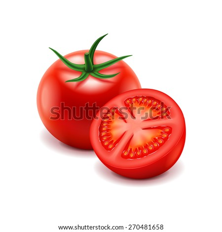 Tomato and slice isolated on white photo-realistic vector illustration - stock vector