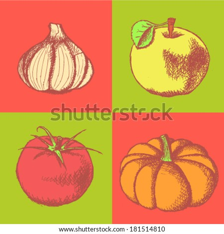 Tomato, garlic, pumpkin and apple sketch, vector set - stock vector