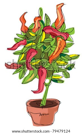 tomato plant - stock vector
