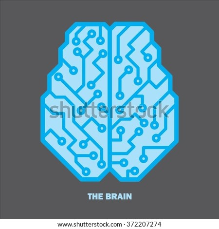 Top view Blue color Brain vector illustration  - stock vector