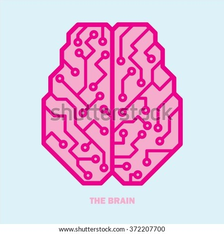 Top view vector Pink color Brain illustration - stock vector