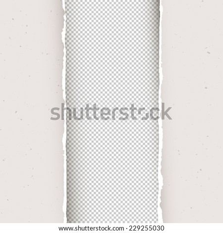 Torn papers background. Vector, EPS10 - stock vector