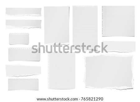 Torn ruled and blank note, notebook, paper strips, sheets for text or message stuck on white background.