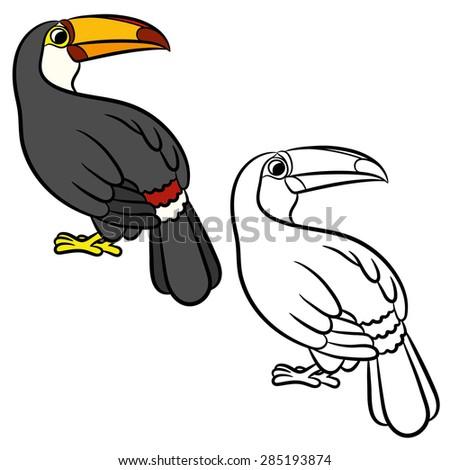 Toucan bird illustration. Coloring page. Vector - stock vector