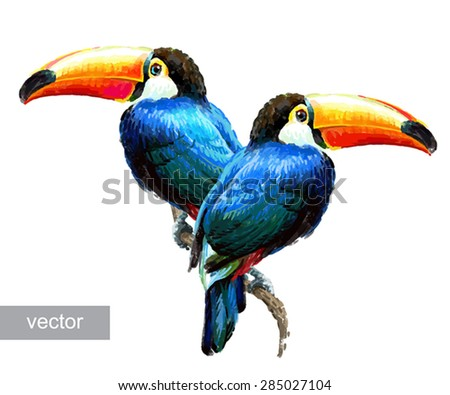 Toucan sitting on tree branch isolated on white background. Tropical birds. Drawn illustration. - stock vector