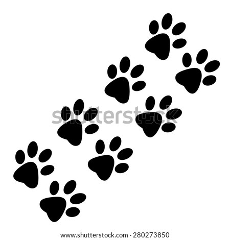 Traces of animal paws on a white background - stock vector