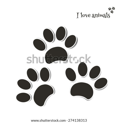 Traces of the dog. For veterinary pharmacy. Shop for animals