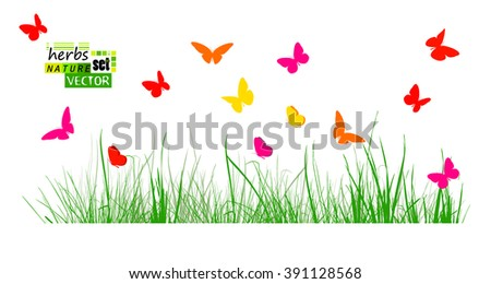tracing grass with colorful butterflies. Vector - stock vector