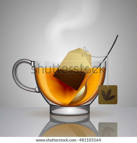 Transparent glass cup with tea bag, spoon and hot water isolated on gray. Vector illustration