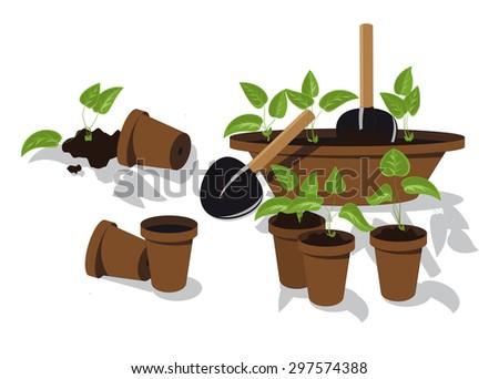 transplanting flower seedlings individual pots - stock vector