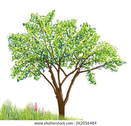 tree and grass with flowers drawing on white background - stock vector