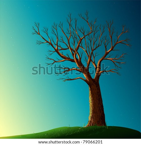 tree background - stock vector