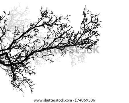 tree branch vector stock vector 174069536 shutterstock rh shutterstock com vector christmas tree branch vector tree branch png