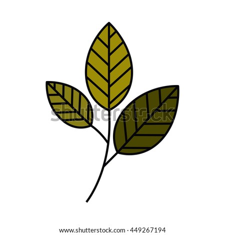 tree branch with leaves isolated icon design - stock vector