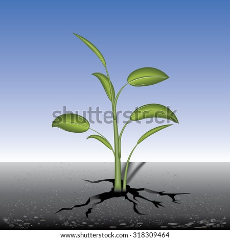 Tree grows through crack in the pavement, vector illustration.