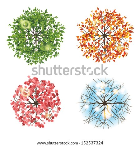 Tree icon in 4 different seasons - top view. Easy to use in your landscape design projects!  - stock vector
