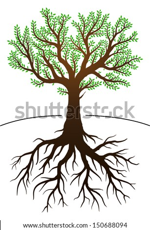 Tree illustration with green leaves and roots - stock vector
