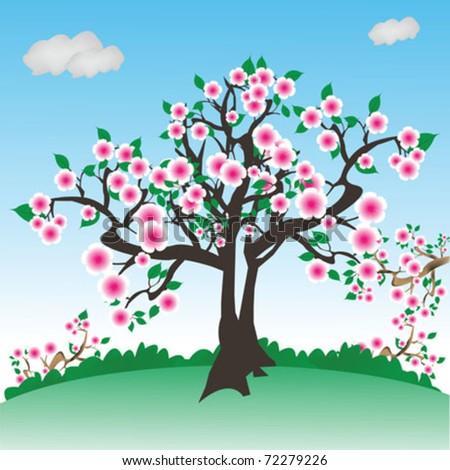 tree in spring - stock vector