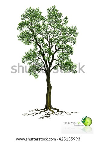 tree on white background,Vector trees in silhouettes.Create many more trees with leaves and bare trees on the bottom,Set of abstract trees,Green Oak,tree with a realistic,beautiful trees