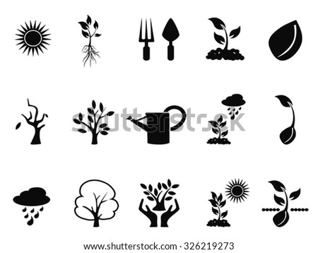 tree sprout growing icons set