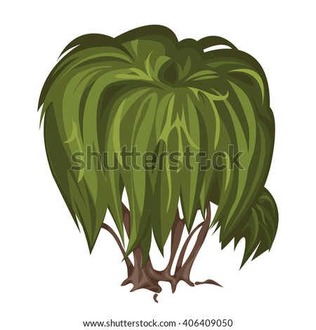Tree with a weeping crown. Vector illustration. - stock vector