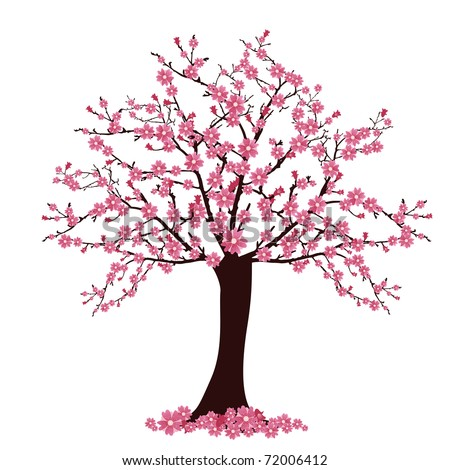 tree with cherry blossoms - vector - stock vector
