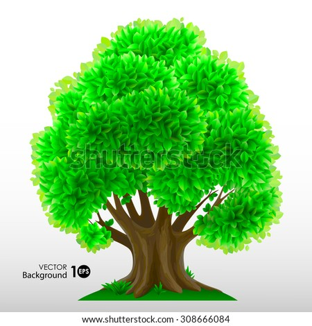Tree with green leaves. Eps 10. - stock vector