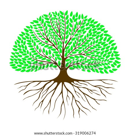 Tree with the root system and green foliage in a circle. The entry for the logo, emblem, symbol. - stock vector