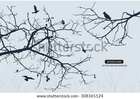 Trees and branches silhouette in aqua. Detailed vector illustration. Forest banner. - stock vector
