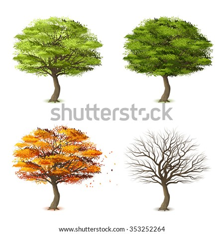 Trees in four seasons realistic decorative icons set isolated vector illustration