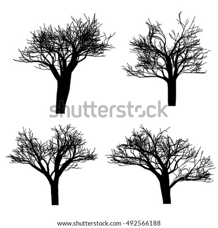 Trees on a white background. Set of trees. Vector illustration. Fruit tree. Autumn tree. Green tree. Fruit tree.