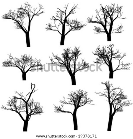Trees silhouettes, isolated on white background