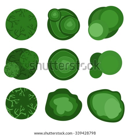 trees top view for landscape design. Vector illustration - stock vector