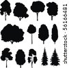 Trees. Vector silhouettes set. - stock