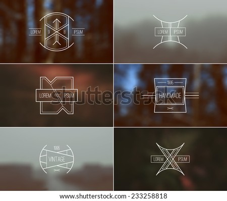 Trendy retro vintage badges in thin line style and card with blurred backgrounds. Autumn forest colors - stock vector