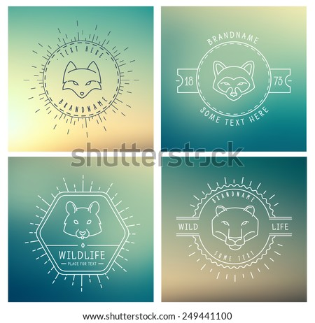 Trendy Retro Vintage Insignias Bundle. Animals. Hamster, lion, raccoon, fox. Vector set of outline emblems and badges - abstract hipster logo templates - stock vector