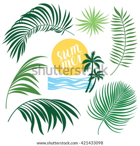 Tropic Collection, tropical leaves set, vector illustrations - stock vector