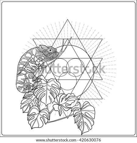 Tropical Animals Coloring Book Plants On Background Sacred Stock Vector