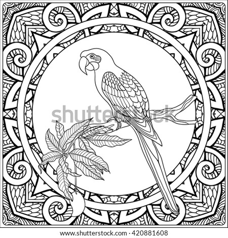 Tropical Animals Coloring Book Plants On Decorative Pattern Stock Vector
