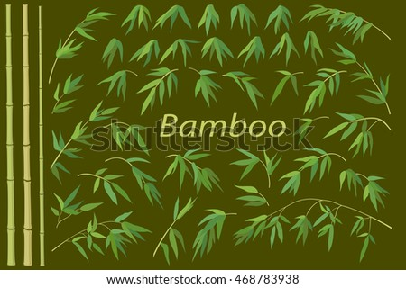 Tropical Bamboo Plants Trunks, Stems, Branches and Green Leaves, Exotic Background. Vector