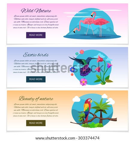 Tropical bird banner horizontal set with pink flamingo colibri and parrot isolated vector illustration