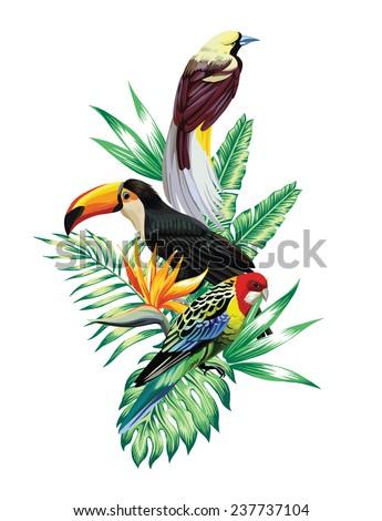 tropical birds composition - stock vector