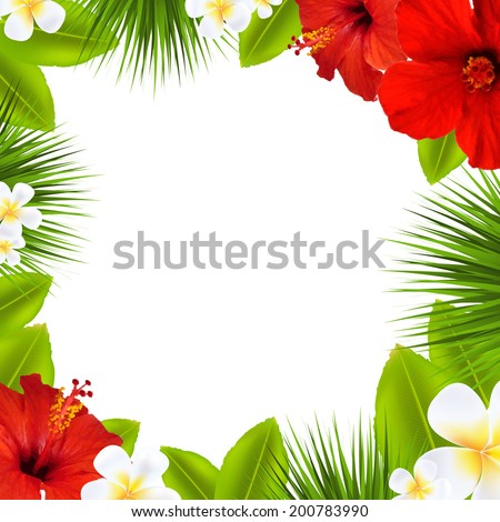Tropical Border, With Gradient Mesh, Vector Illustration - stock vector