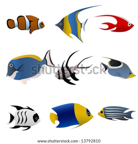 tropical fish vector - stock vector