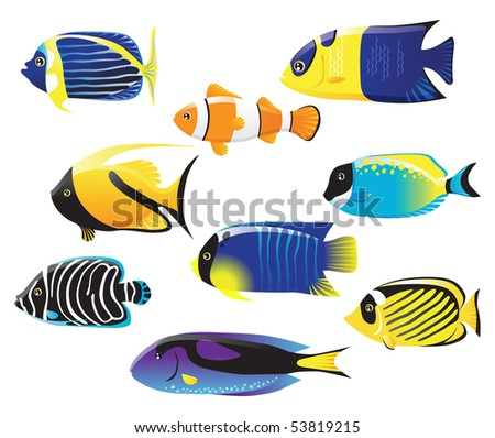 tropical fishes collection - stock vector