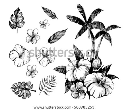 Tropical Flowers And Palm Trees Outline Vector Set