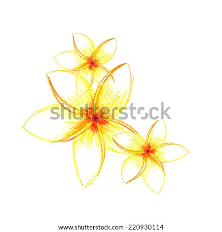 Tropical flowers pencil. Vector - stock vector