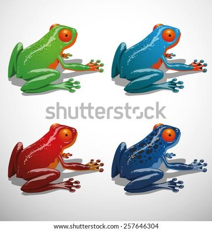 Tropical frog. set, vector - stock vector