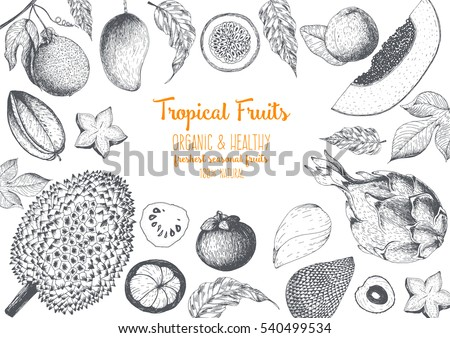 Tropical Fruits top view frame with durian, pitaya, mangosteen, passionfruit, carambola, papaya, litchi, guava. Farmers market menu design. Healthy food poster. Engraved sketch vector illustration.
