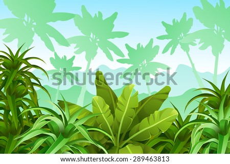 Tropical jungle.
